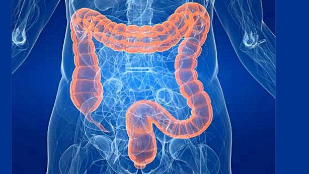 En la jornada 'Manejo del paciente con Síndrome de Intestino Corto (SIC) por parte de Farmacéuticos de Hospital' se han abordado los últimos avances farmacoterapéuticos en esta patología.
