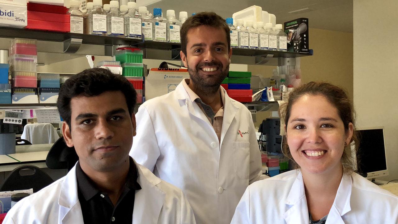 Dinesh Tripathi, Jordi Gracia-Sancho y Marina Vilaseca, investigadores del Ciberehd e Idibaps y autores del trabajo que se publica en 'Gastroenterology'.
