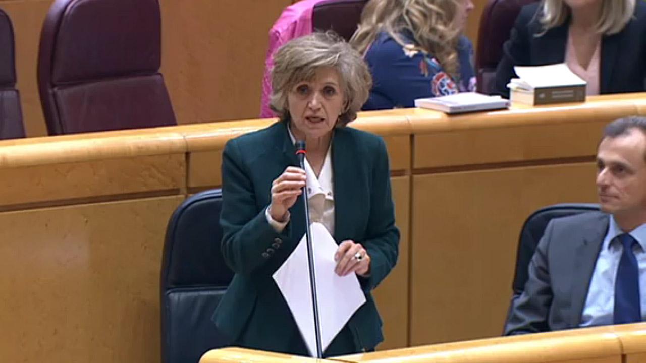 La ministra maría Luisa Carcedo, en el Senado