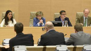 La ministra de Sanidad, María Luisa Carcedo, en la Comisión de Sanidad