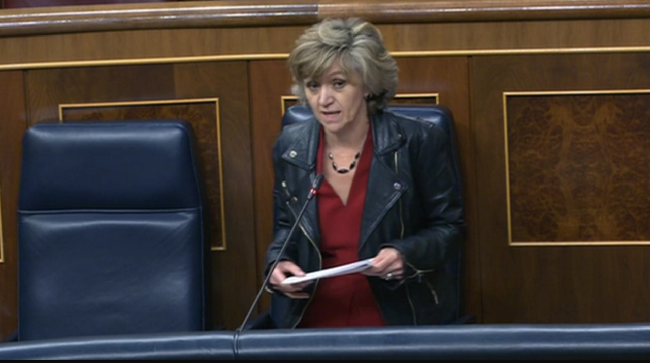 La ministra de Sanidad, en el Congreso