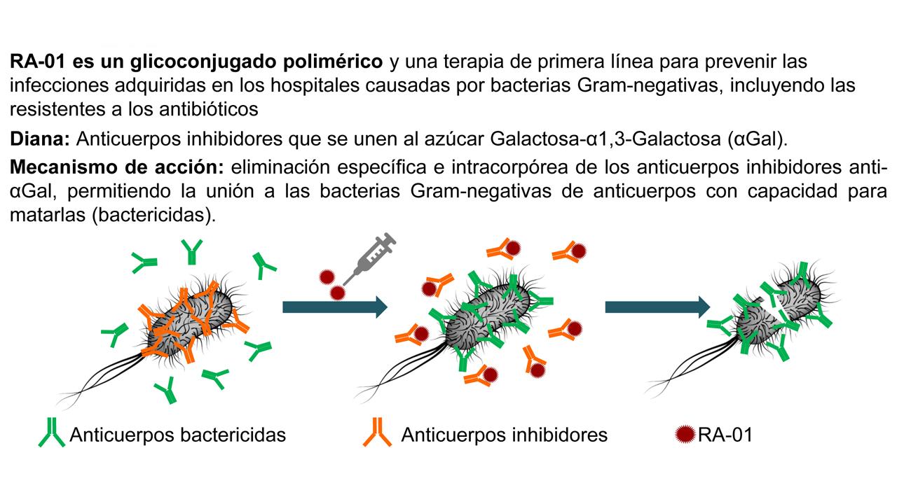 La molécula RA-01 contra las resistencias bacterianas.