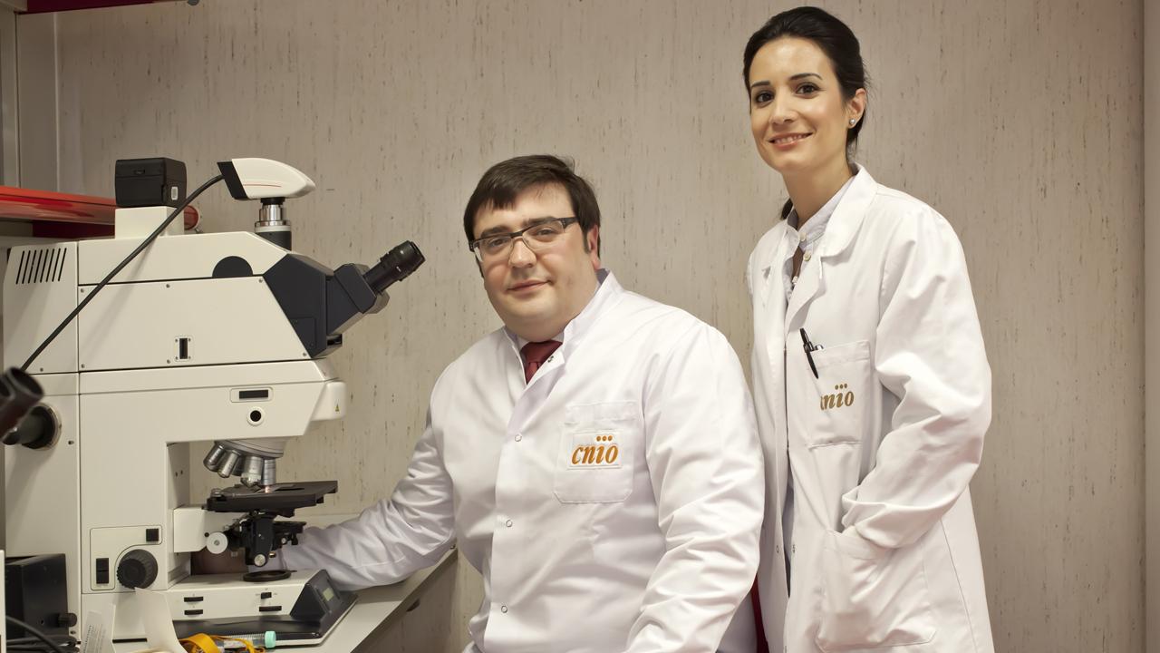 vínculo entre la leche y el cáncer de próstata