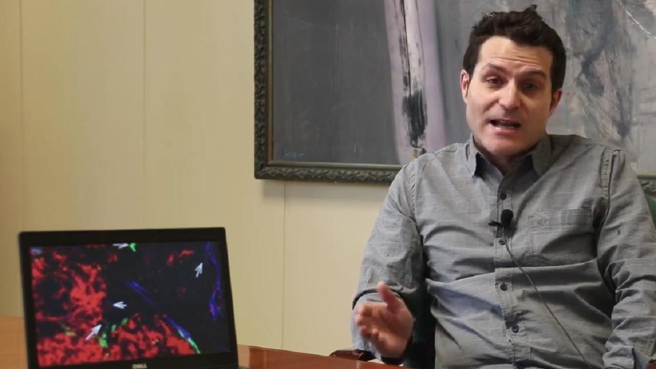 Fernando Calvo, investigador del Instituto de Biomedicina y Biotecnolog�a de Cantabria (CSIC)