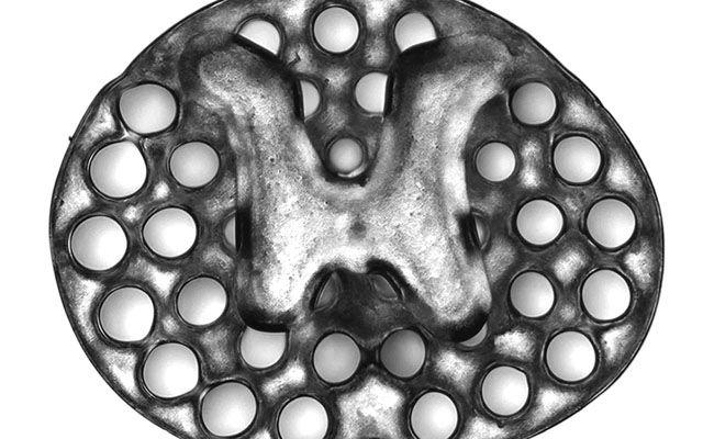 Implante de dos milímetros, impreso en 3D empleado como andamiaje para recuparar la lesión medular de ratas.