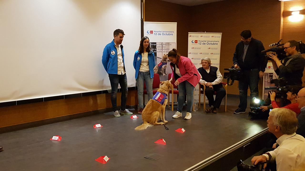 Ejemplo de los ejercicios que los pacientes con alcoholismo realizan en la terapia asistida con perros como parte de un tratamiento complementario para abandonar el consumo de alcohol.
