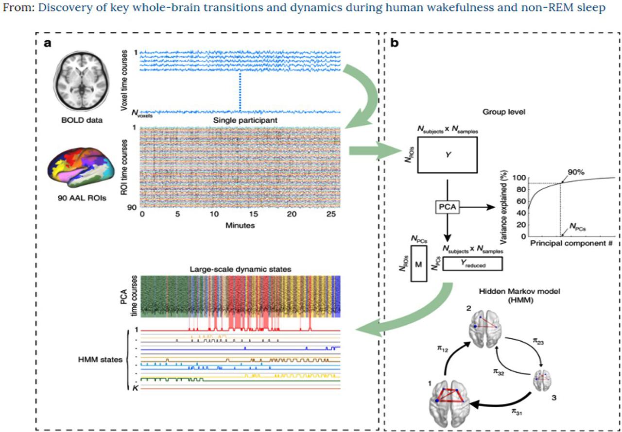 Figura 1: Redes dinámicas de todo el cerebro de las grabaciones de sueño fMRI utilizando un modelo oculto de Markov