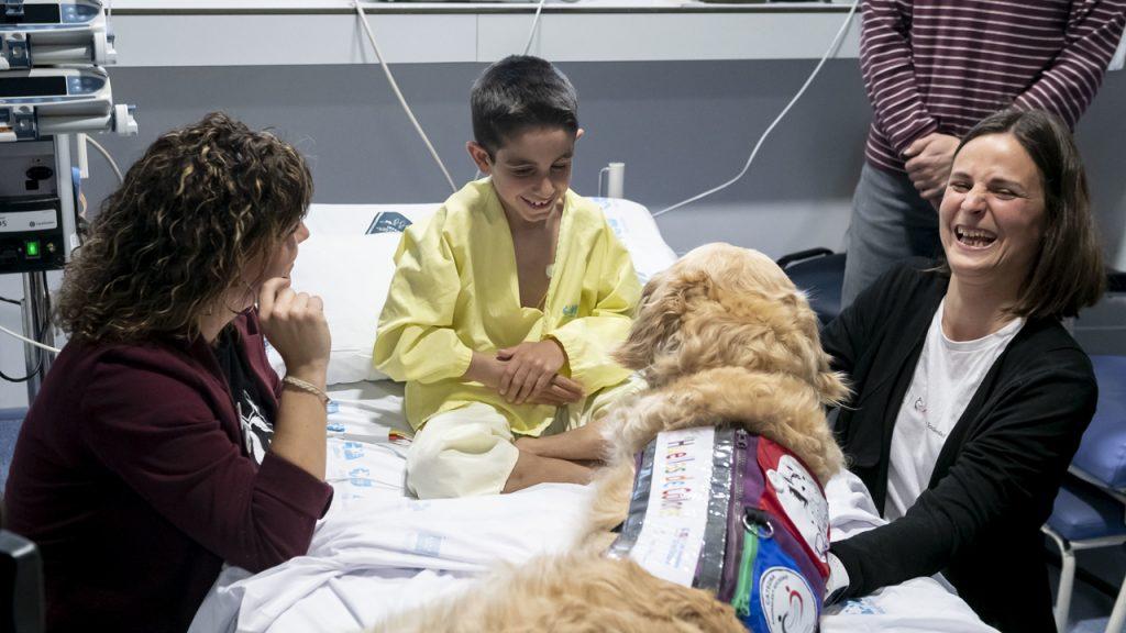 El proyecto 'Huellas de Colores' de terapia asistida, puesto en marcha en el 12 de Octubre, junto a la Universidad Rey Juan Carlos y la Asociación PsicoAnimal, consigue reducir la ansiedad, el dolor y el miedo en los niños ingresados en la UCI.