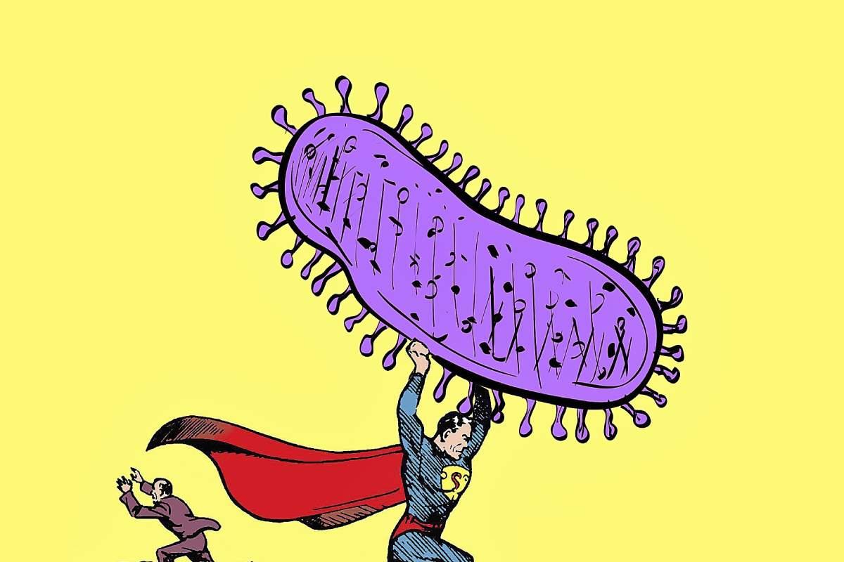 Hacen falta más y mejores antibióticos frente a las 'superbacterias'.