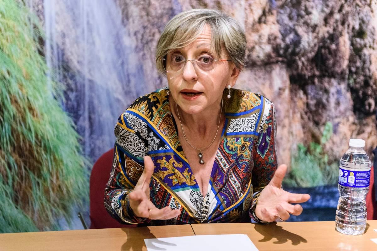 María José Cerqueira, presidenta de Sefse-Areda (DM)