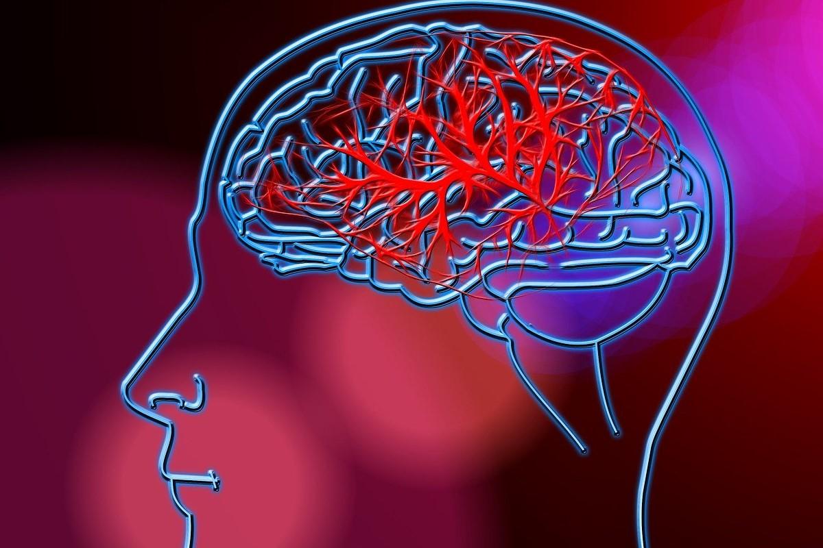 Perfil cerebral en rojo y azul