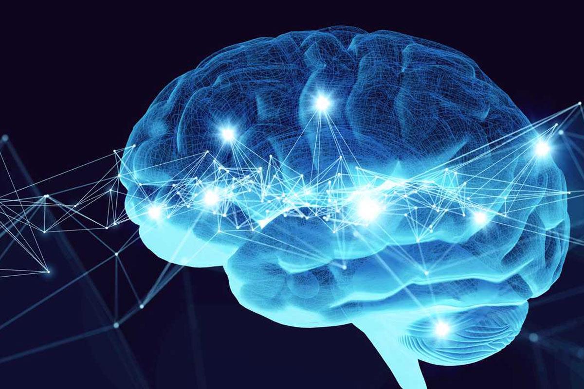 La epilepsia se caracteriza por la predisposición del cerebro para generar crisis epilépticas