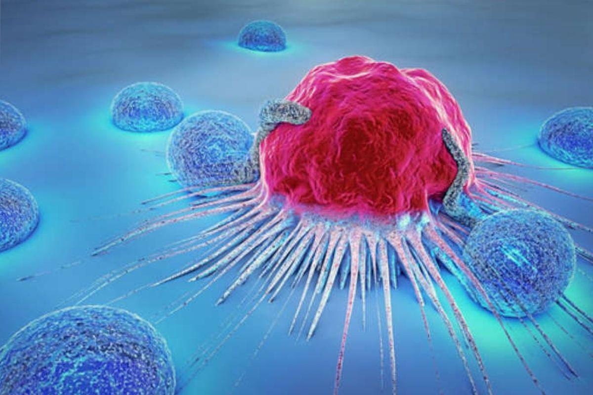 Las células tumorales pueden retraerse con inmunotrapia.