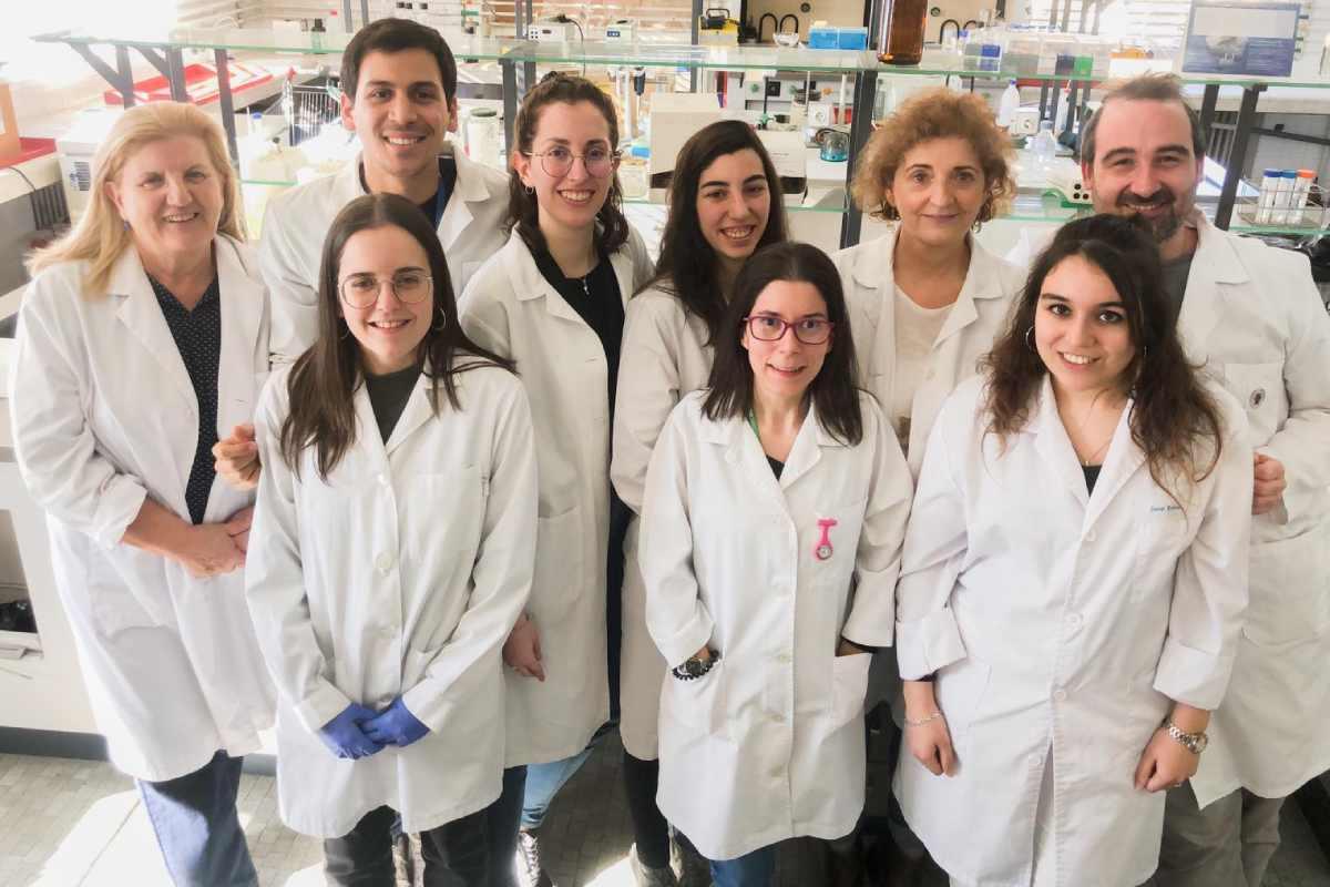 Grupo de investigación del CiberCV-UCM-IISGM y del IBGM-Hospital Clínico de Valladolid.