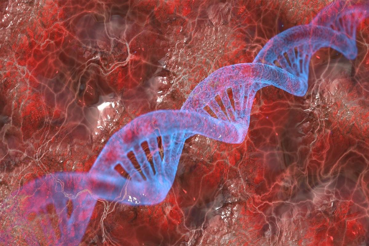 Cadena de ADN entre células sanguíneas