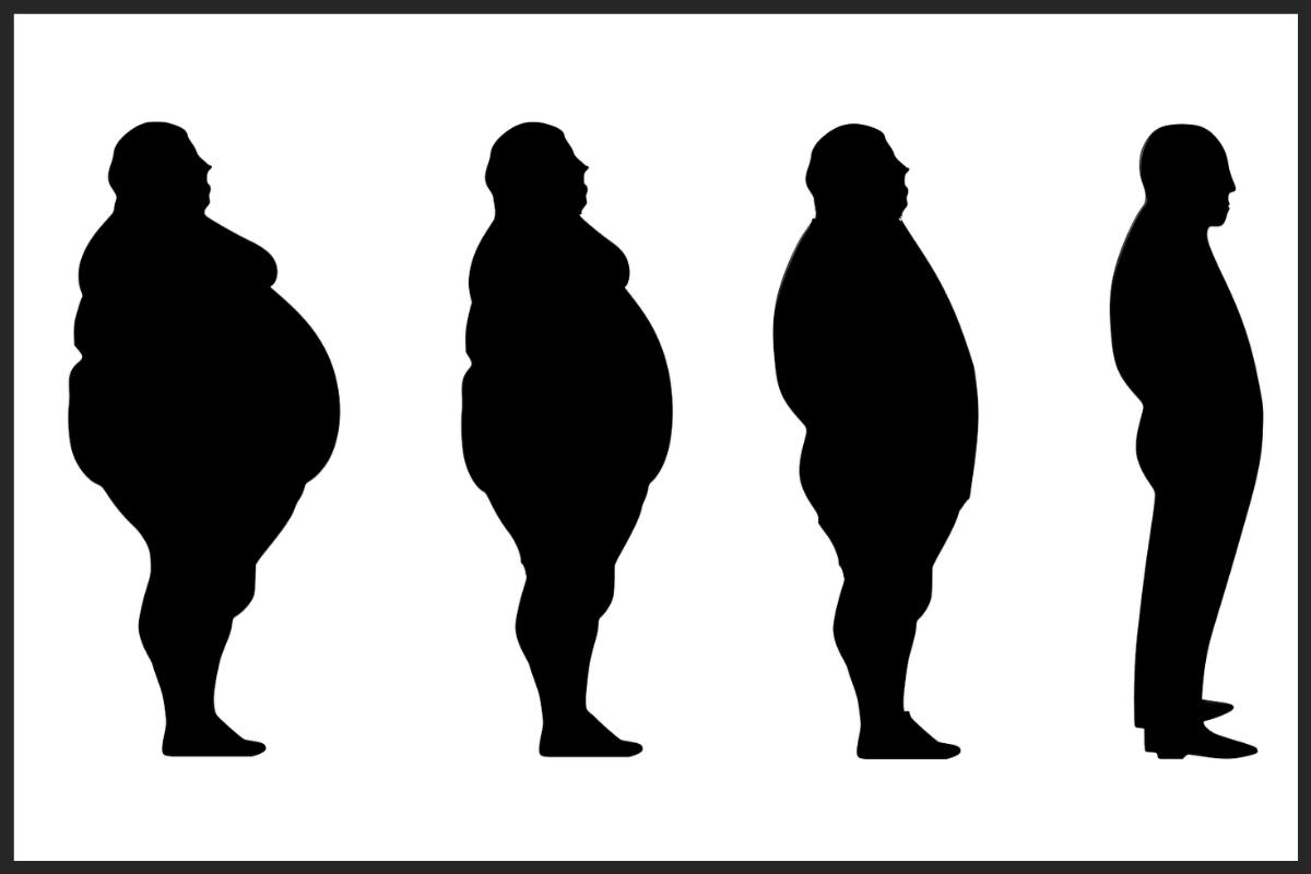 Los mecanismos inflamatorios de la obesidad son una puerta de entrada para el SRAS-CoV-2.