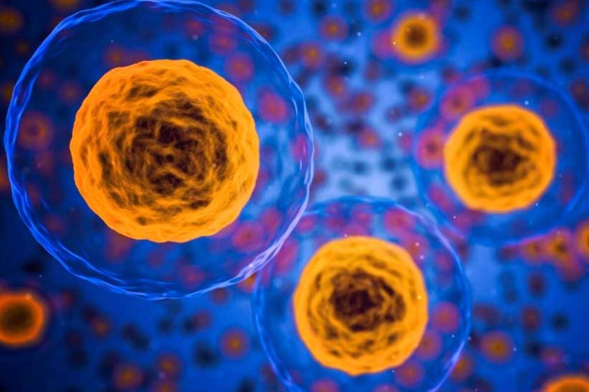 Investigadores del CSIC investigan la capacidad de antitumorales para bloquear el coronavirus.