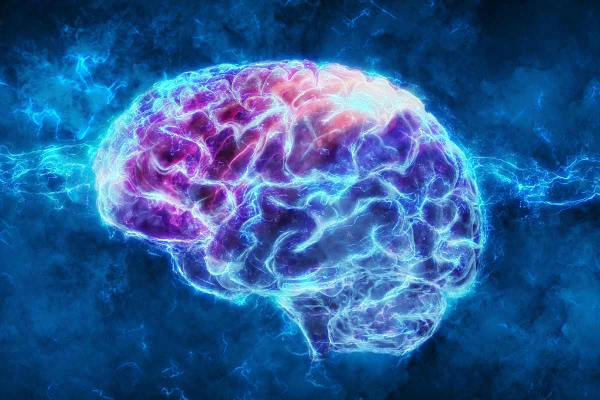 El cerebro utiliza ondas lentas y rápidas para adaptarse a las demandas cognitivas