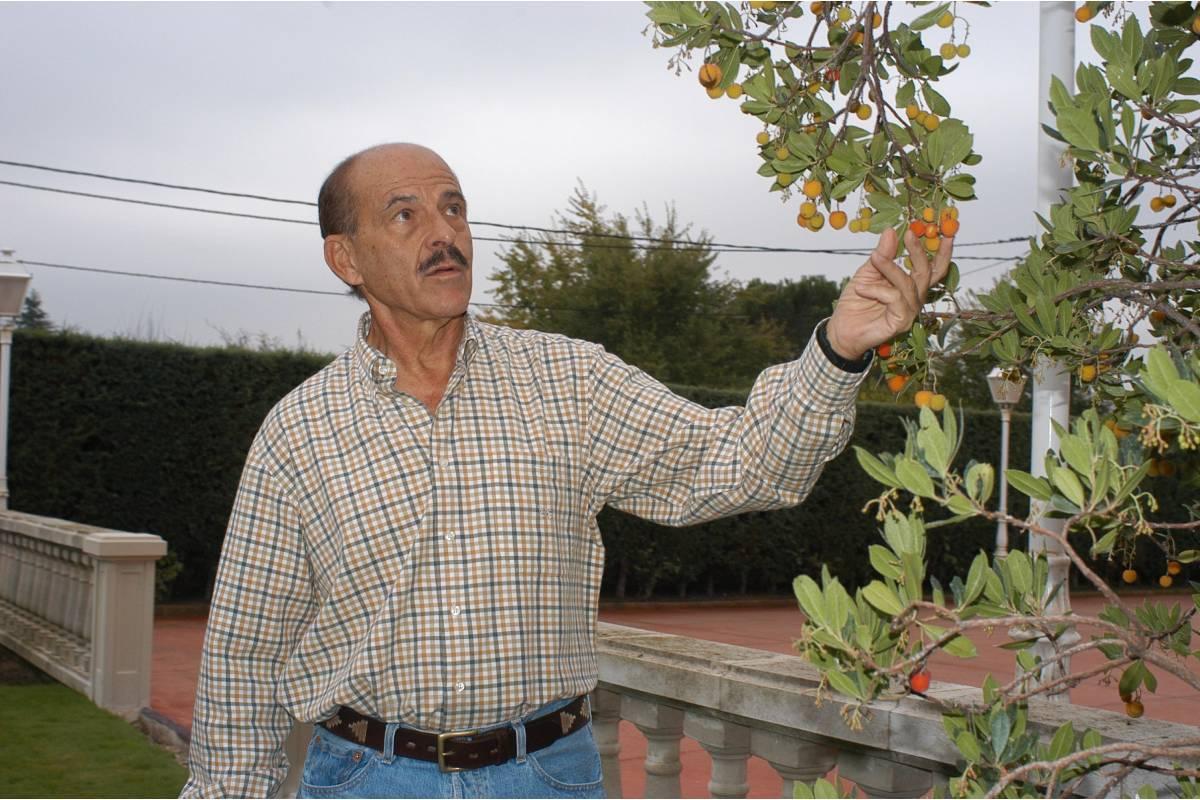 Salvador Rivas Mart�nez, farmacéutico y experto en Botánica.