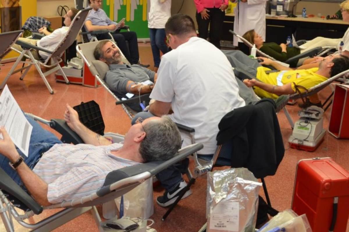 Un grupo de donantes de sangre.