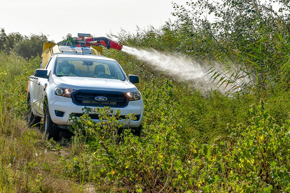 Tareas de fumigación contra el mosquito trasmisor de la fiebre del Nilo en la zona de Coria del Río (Junta de Andalucía)