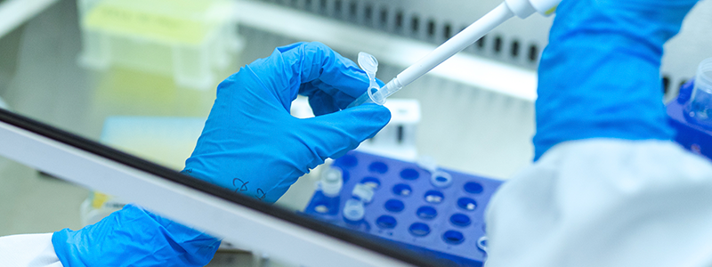Un total de 92 investigadores participan en el proyecto Branyas.