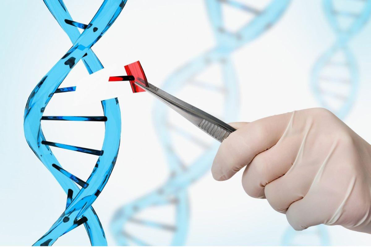 La técnica CRISPR ha sido reconocida con el Nobel de Química 2020.