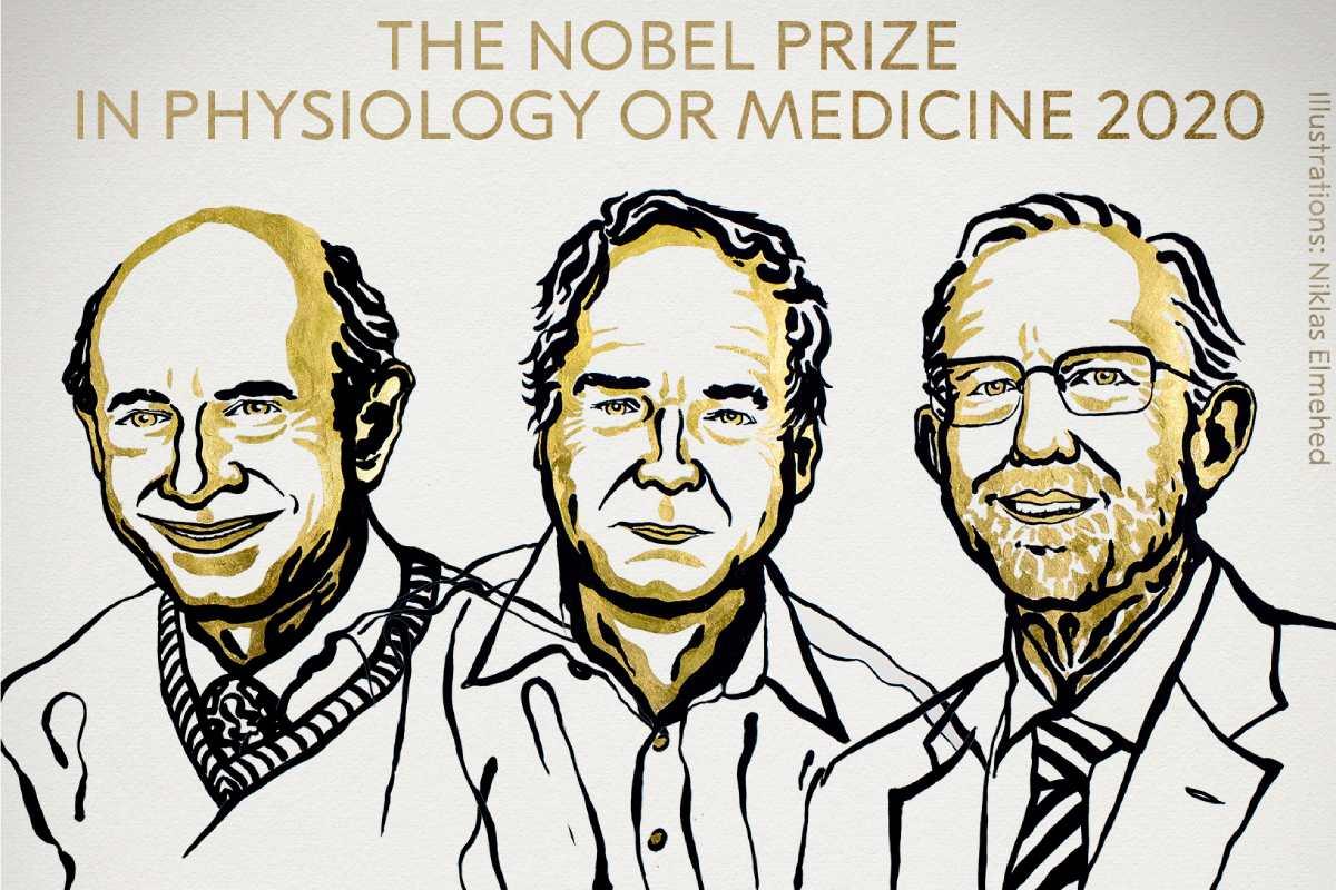 Harvey J. Alter, Michael Houghton y Charles M. Rice.