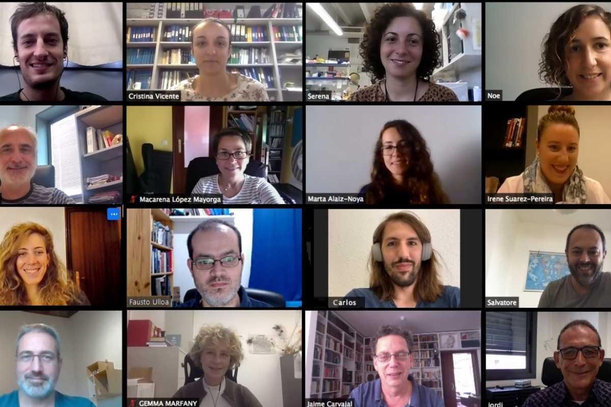 Reunión virtual del equipo de la UB, IBUB, CSIC y UPO.