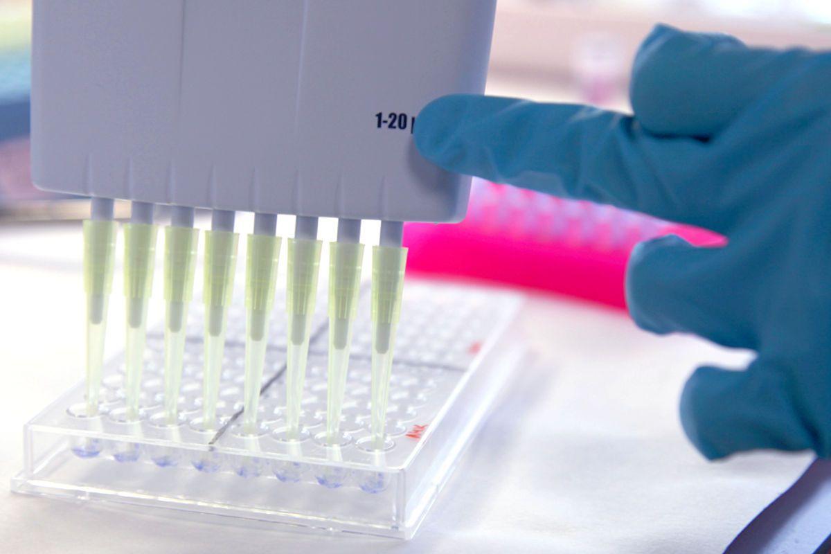 La determinación de biomarcadores es esencial en cáncer.