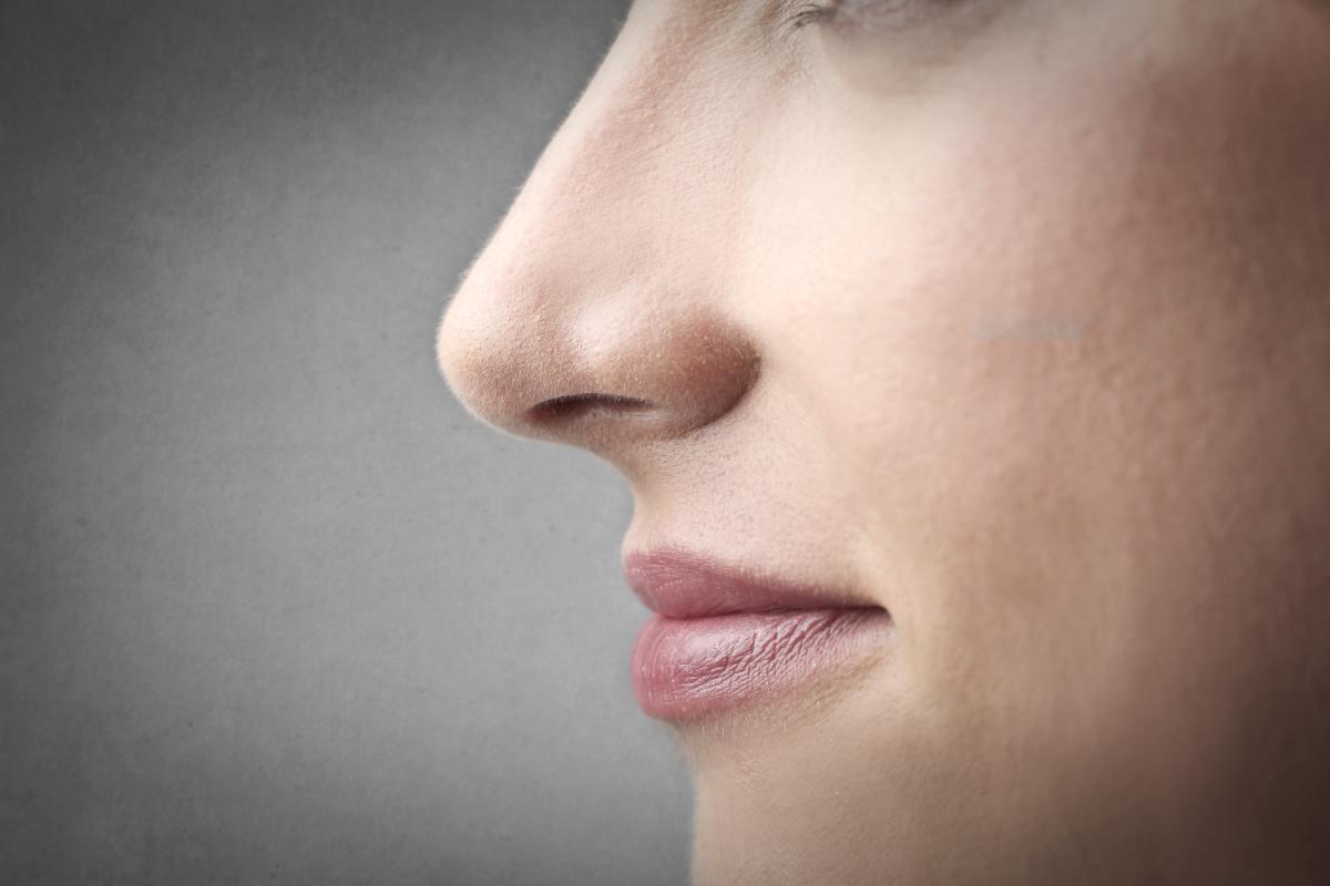 Boca y nariz