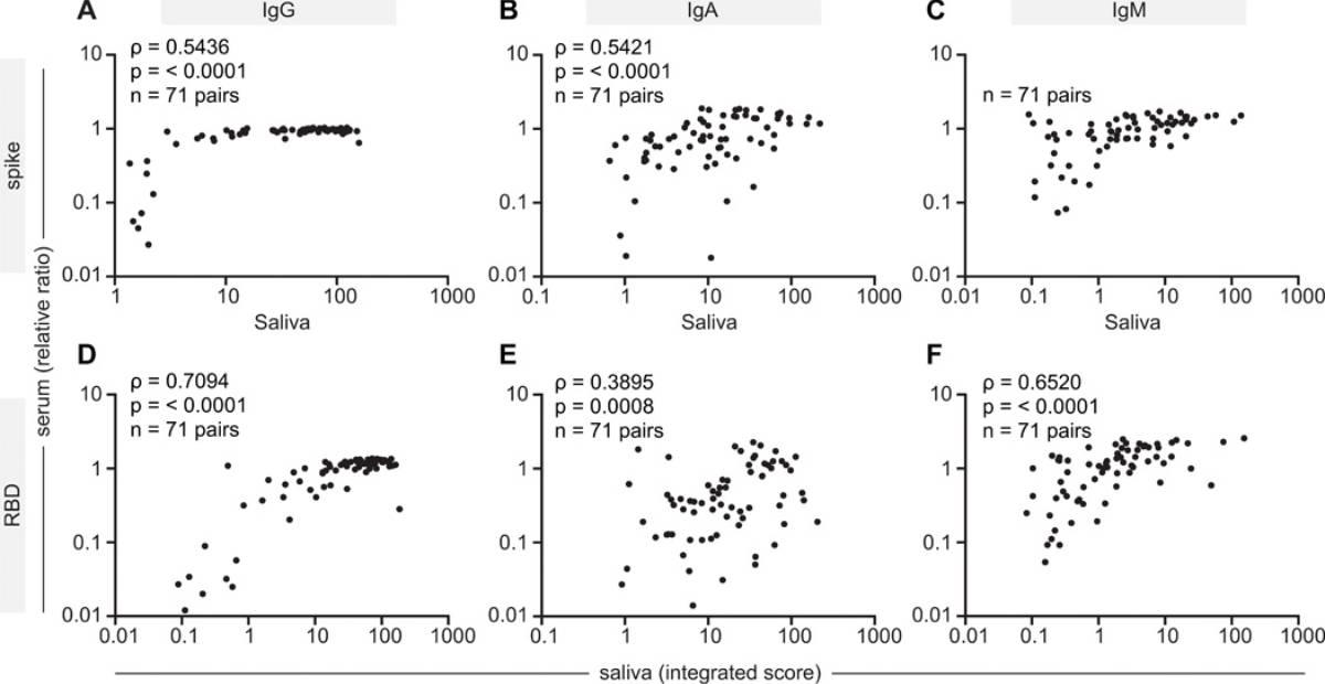 Correlación de IgG, IgA e IgM en sangre y saliva.