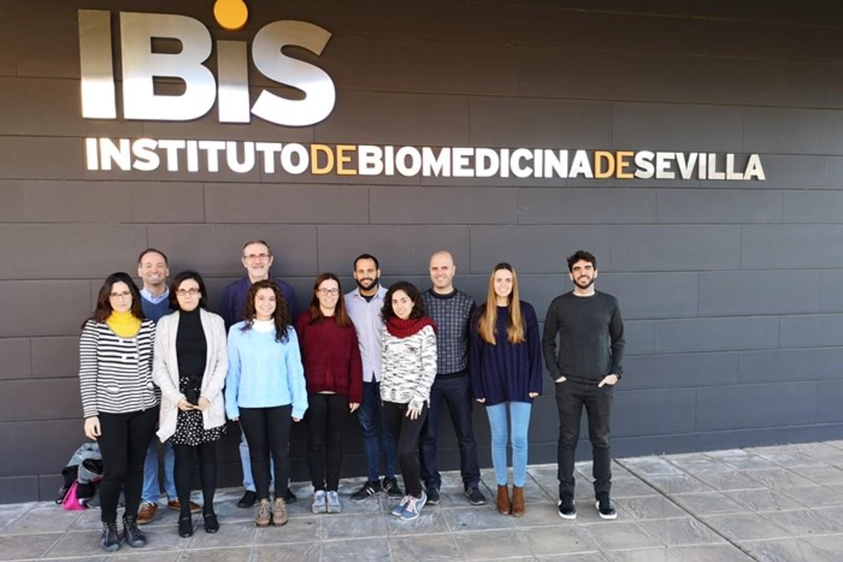 Equipo del CiberONC en el IBIS de Sevilla.
