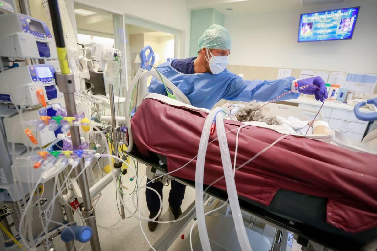 Médico atendiendo a un paciente con covid en una UCI belga.
