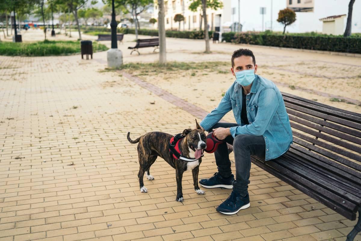 Continúa la tendencia descendente de los nuevos contagios de coronavirus