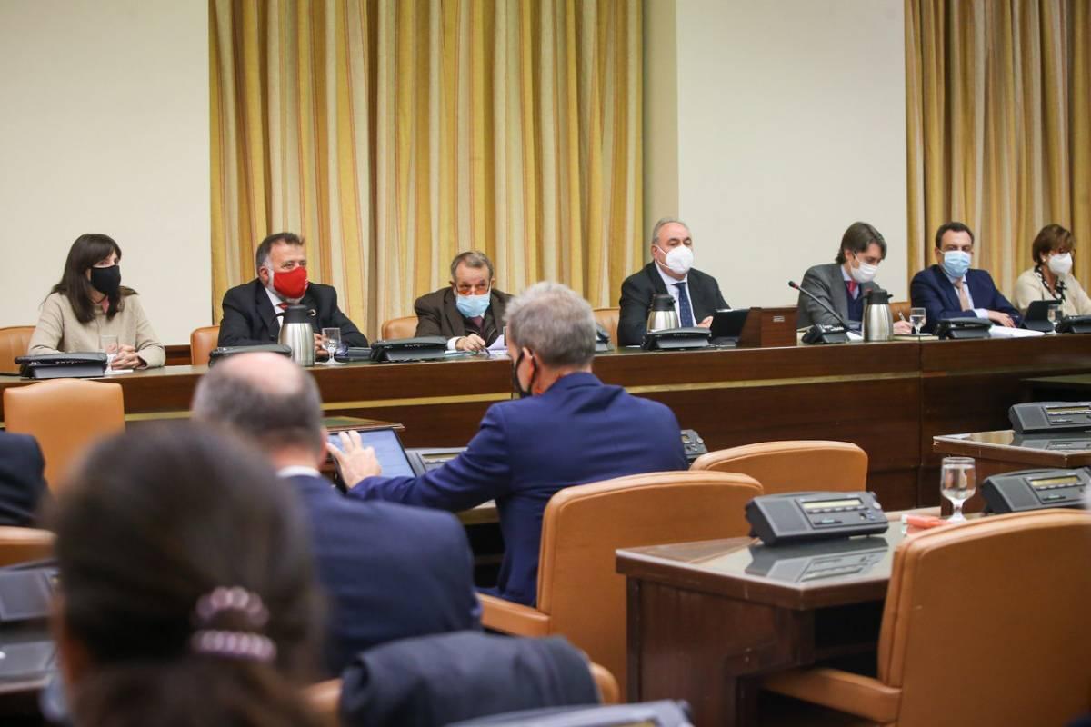 Comparecencia de Francisco Fernández Marugán en el Congreso de los Diputados ante la Comisión Mixta de Relaciones con el Defensor del Pueblo.