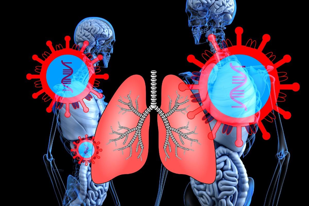 Pulmones y coronavirus