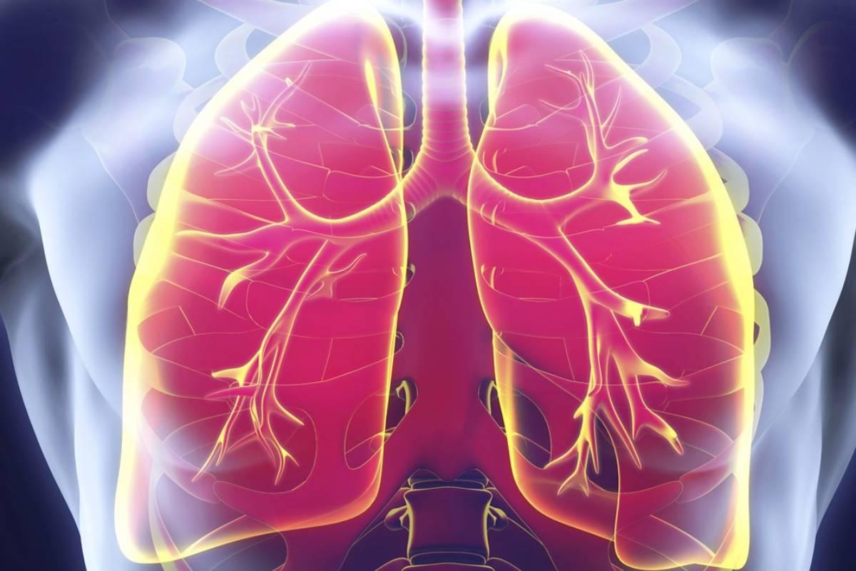 EL Área de Enfermería Respiratoria de Separ, que se formó en 1992, tiene más de 900 miembros.