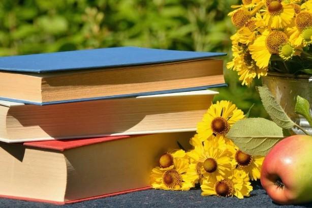remedios literarios