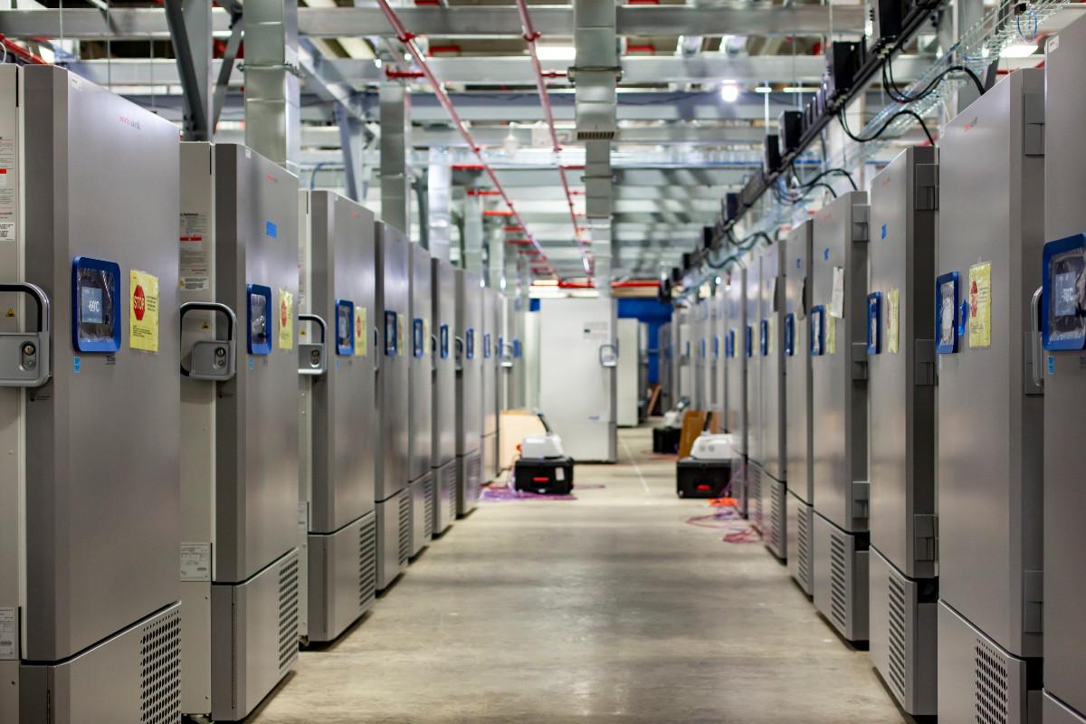 La vacuna de Pfizer y BioNTech se producirá en las instalaciones de Pfizer en Kalamazoo (Estados Unidos).)