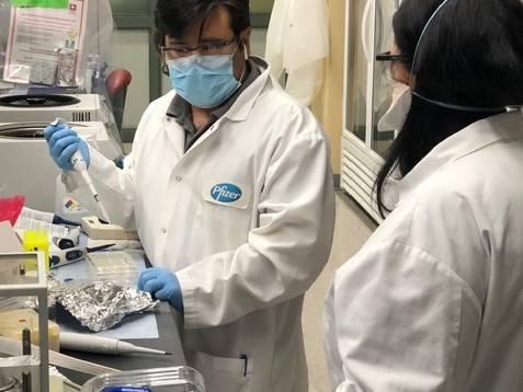 El laboratorio de Pfizer en Pearl River (Nueva York) está centrado en la I+D de vacunas.