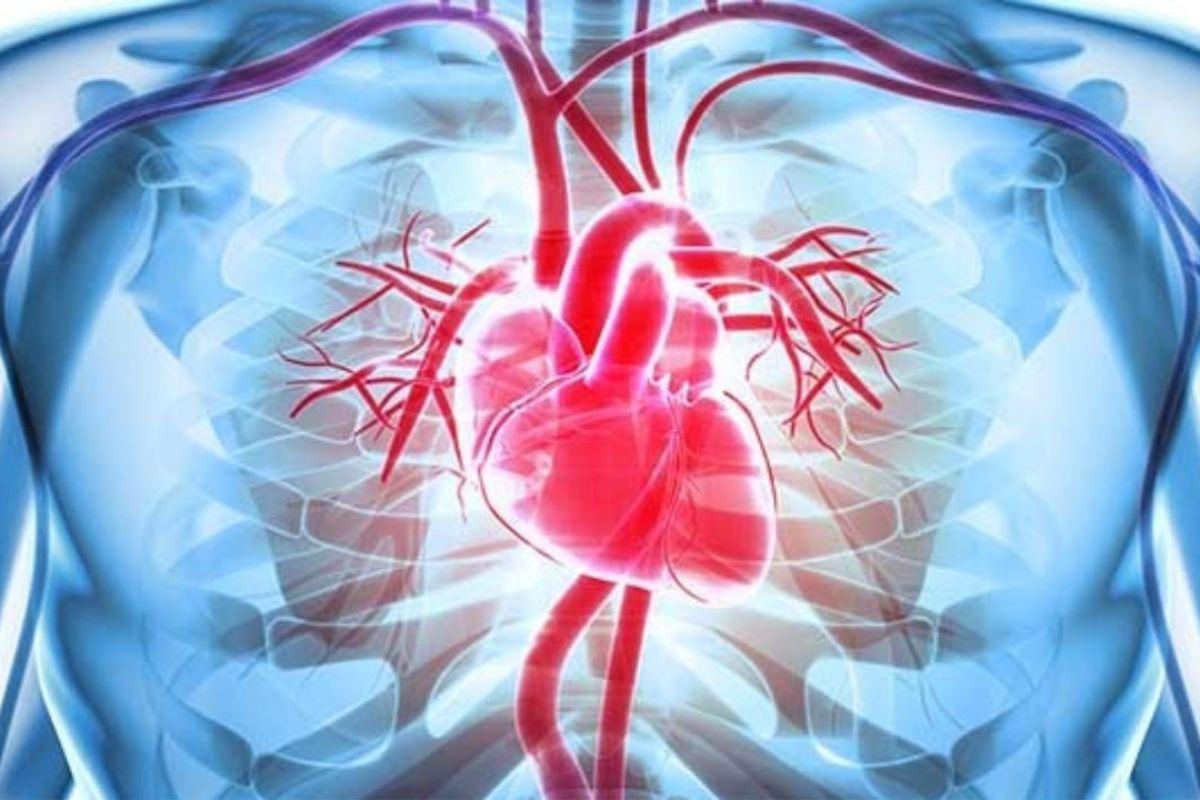 La enfermedad cardiovascular es la principal causa de mortalidad en el mundo. La mayoría de las muertes por ECV se debe a infarto de miocardio y/o accidente cerebrovascular.