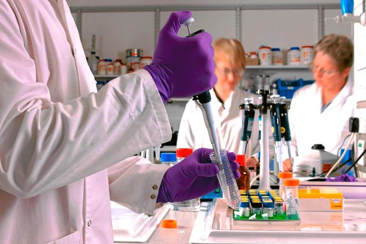 La investigación debe entenderse como una inversión y no como un gasto. Ese el mensaje que la Conferencia de Rectores de las Universidades Españolas (CRUE) quiere mandar a los ministerios de Ciencia y Universidades.