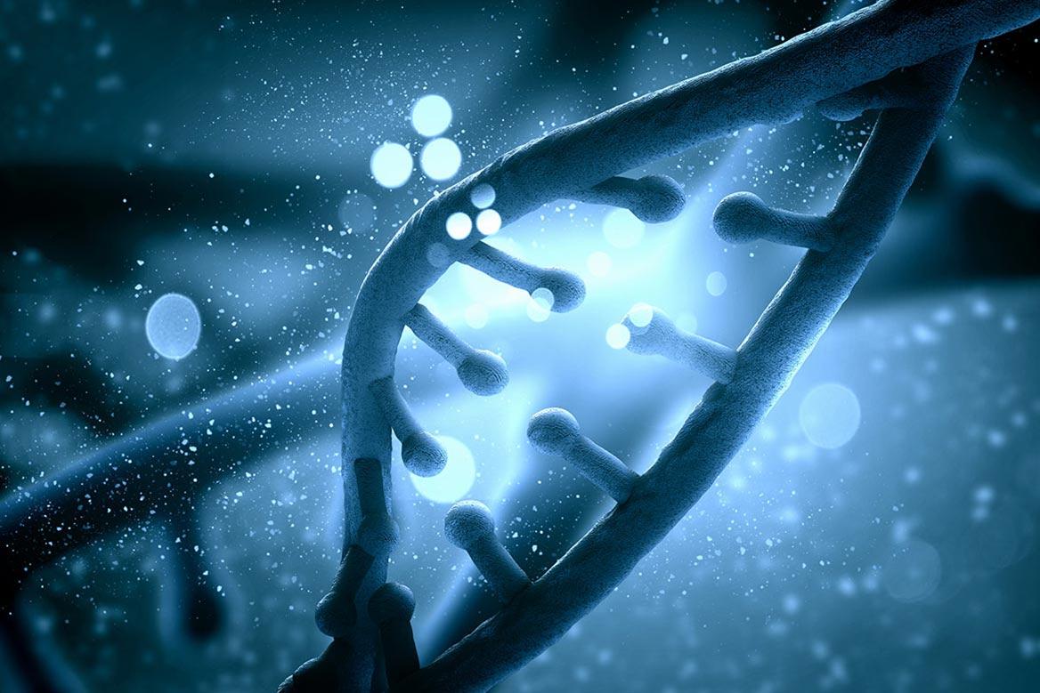 •El estudio de las células T ha revolucionado el abordaje de las enfermedades oncológicas