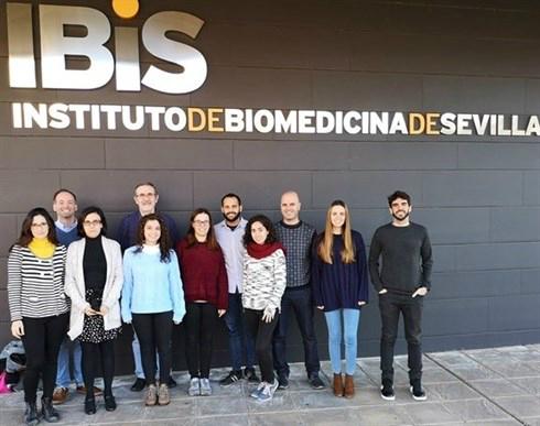 Grupo del CiberONC en el IBIS coordinado por Amancio Carnero.