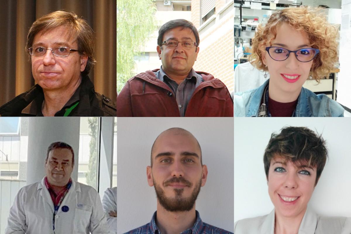 Arriba, Pablo Lapunzina, Víctor Luis Ruiz y Elisa Fernández; debajo, Julián Nevado, Ricardo Gómez y Ana Rivera.