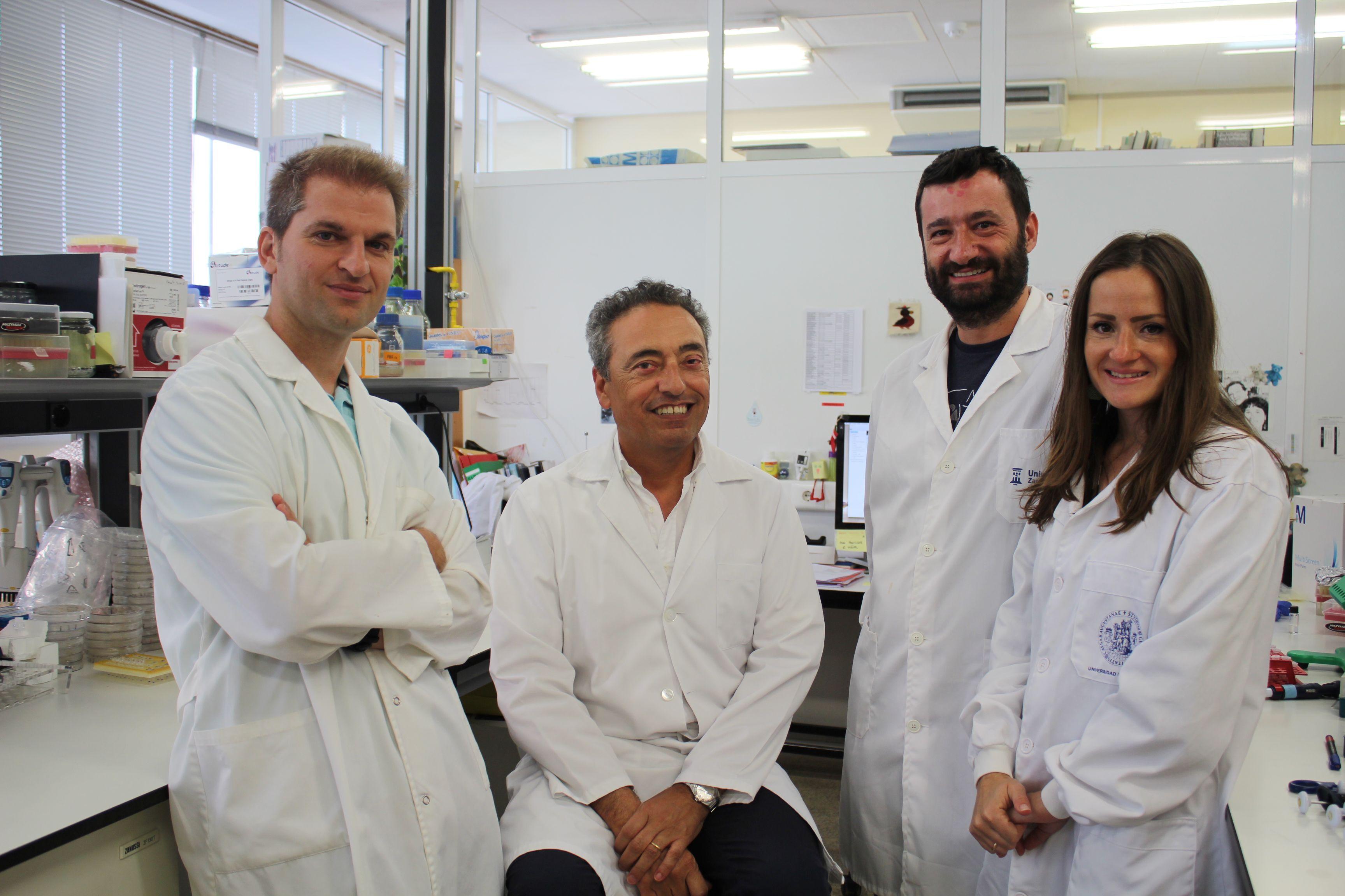 De izda a dcha: Jesús Gonzalo-Asensio, Carlos Martín, Ignacio Aguiló, y Dessislava Vaneva Marinova, parte del equipo que desarrolla la vacuna MTBVAC.