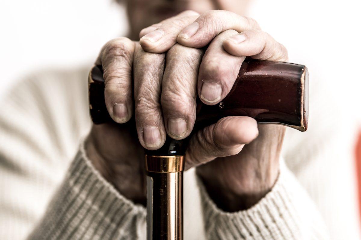 Durante dos años, los investigadores del proyecto 'Branyas' analizarán datos de más de 3.000 personas mayores que viven en unas 30 residencias.