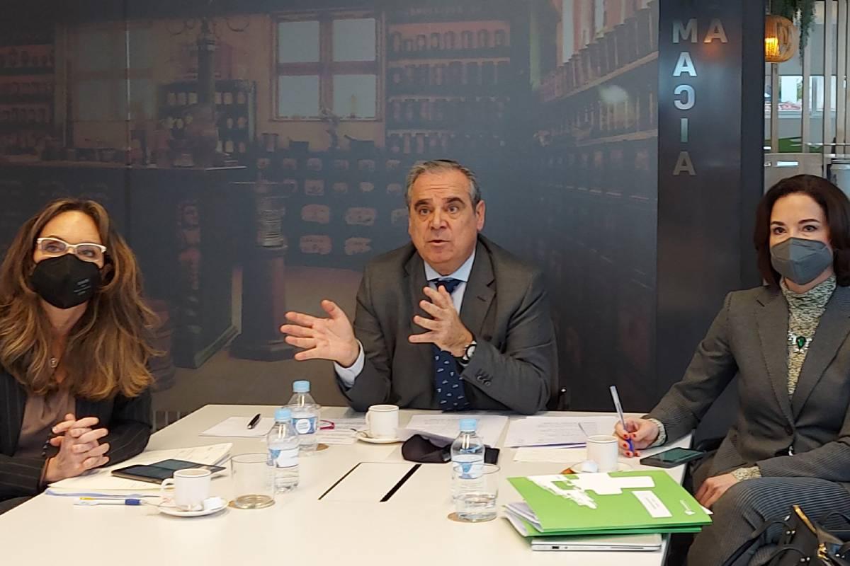 Ana López-Casero, Jesús Aguilar y Raquel Martínez, del Consejo, durante el encuentro 'on line' mantenido con periodistas.