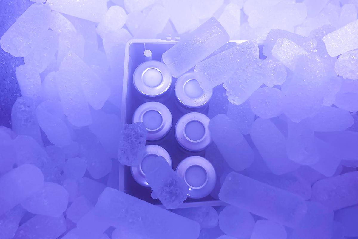 Viales de vacunas colocados sobre hielo seco para su transporte médico.
